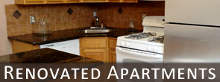 Kitchen - Apartment Rentals